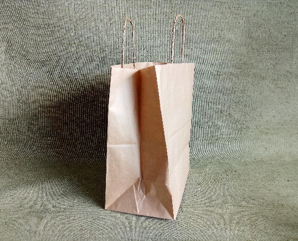 ECO CarrBag pl W 280(280мм х150мм х 320мм)
