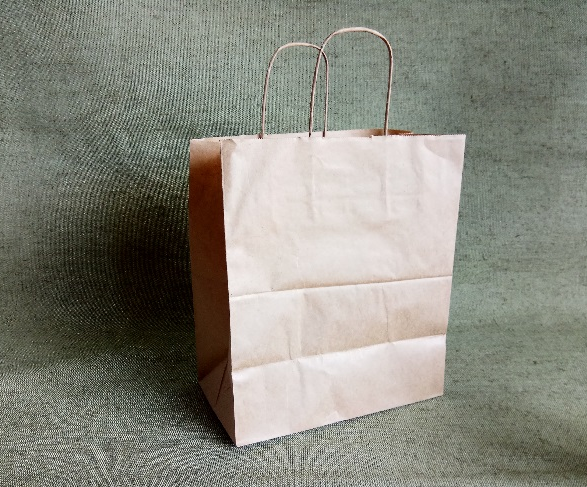 ECO CarrBag tw 320(320мм х 200мм х 370мм)